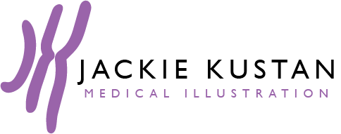 Jackie Kustan, Medical Illustration